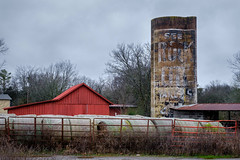 See Rock City Silo. (Mr. Pick) Tags: see rockcity murfreesboro tn tennessee rutherford silo barn advertising paint painted