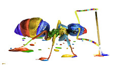 An art ant (kunstschieter) Tags: ant macro insect paint multicolora smileonsaturday
