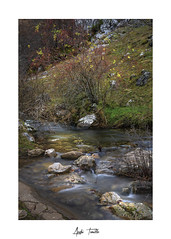 _ATP4600 (anahí tomillo) Tags: nikond7500 sigma1750f28 lightroom bosque forest naturaleza nature paisaje landscape agua water rio river rocas rock otoño autunm longeexposure largaexposición