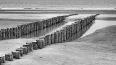 The beach (Duevel) Tags: breakwater beach branding strand golfbreker bw zeeland sea zee zand sand water reflection spiegeling