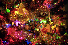 Saturnalia (Jetcraftsofa) Tags: nikonf3 nikkor2035 lomo100 35mm slr filmphotography availablelight yule christmas solstice tree pine pagan saturnalia fairylights holly