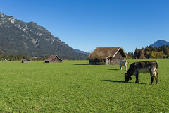 Kreuzeck-/Alpspitzbahn (Steffi A. Boehler) Tags: allgäu alpen alpspitze bavaria bayern bombenwetter grainau herbst kreuzeck seilbahn urlaub zugspitze zugspitzgebiet goldeneroktober