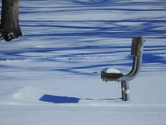 Me and My Shadow (Anton Shomali - Thank you for over 2 million views) Tags: photo picture capture flickr meandmyshadow snowcovered wind cold ice sun storm chair seat winter shadow snow bench kankakee kankakeestatepark park