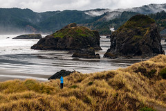 Storm Watcher (garshna) Tags: ocean clouds fog grasses tide person seastacks oregon highway mountains outdoors oneperson beach moss bluecoat rain atmosphere