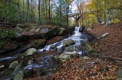 2018_bosque encantado (kbl phtogaphy) Tags: 5100 nikon5100 samyang10mm samyang paisaje paisatge montañas montanya rio riera agua airelibre saltodeagua hojas fulles