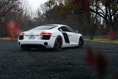 AUDI R8 1 (Arlen Liverman) Tags: exotic maryland automotivephotographer automotivephotography aml amlphotographscom car vehicle sports sony a7 a7iii audi r8 fall