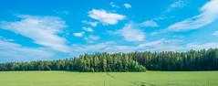 Treeline (IronBokeh) Tags: minsk belarus tree trees green nature landscape sky blue clouds white woods forest