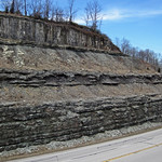 Slade Formation over Cowbell Member (Mississippian; Route 519 Outcrop, south of Morehead, Kentucky, USA) 1 thumbnail