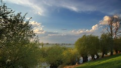 *** (pszcz9) Tags: przyroda nature natura naturaleza pejzaż landscape drzewo tree woda water beautifulearth sony a77 polska poland