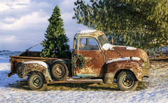 Bringing home the Season      ...HTT! (jackalope22) Tags: htt truck christmas tree wreath thursday