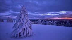 Auf dem winterlichen Feldberg (Benni's Fotobude) Tags: schwarzwald feldberg b500 schnee baden snow germany deutschland winter cold ice eis black forest hochschwarzwald südschwarzwald outdoor wandern schneeschuhe evening abend wetter todtnau gipfel