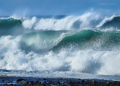 Big Waves on the Big Sur Coast (-Dagmar-) Tags: waves bigwaves bigsurcoast ocean sancarpoforo water northcoast