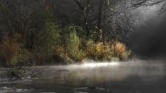 A Sign (keith_shuley) Tags: dawn light bright spotlight stream creek sunrise sunshine bullcreek bullcreekpark austin texas texashillcountry
