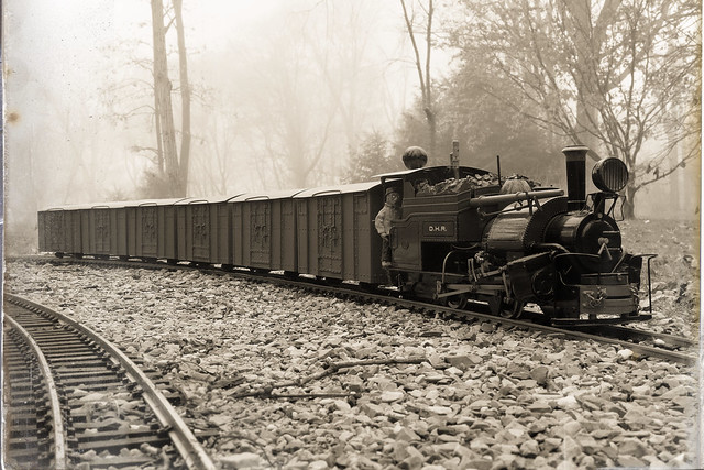 Darjeeling Goods Train