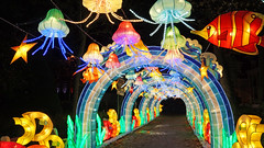 China light festival 2018 à Calais