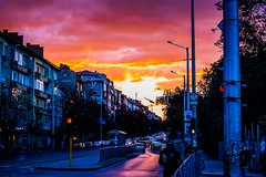 Sunset in Sofia,Bulgaria (radoslav.bonev) Tags: sunset atardecer puestadesol yellow rose orange red photoftheday photography streetphotography street sofia bulgaria centre centro city sky sun summer paisaje landscape pictureoftheday park people car canon700d canon calle carretera bike road gente amarillo pictureftheday ngc sol light clouds cielo colours composition viaje travel travelphotography lamp luces outside old tree