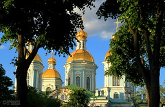 Golden Domes (Mahmoud R Maheri) Tags: church golendomes stpetersburg saintpetersburg russia sky tree orthodoxchurch