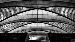 Airport roof (MAICN) Tags: lines architektur building munich dach linien sw gebäude münchen bw highkey blackwhite monochrome geometrisch airport schwarzweis roof architecture flughafen einfarbig 2019 geometry mono