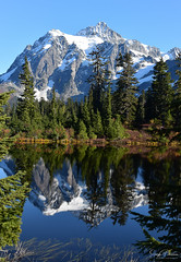 Mt. Shuksan Reflections, Mt. Baker - Snoqualmie National Forest (SonjaPetersonPh♡tography) Tags: mtbaker mtbakersnoqualmienationalforest mtshuksan nikon nikond5300 mountains mountbaker mountainvistas mountain tra viewpoint scenery scenic whatcomcounty water reflections waterreflections forest heathermeadows trees autumn autumncolours october