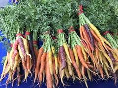 Rainbow carrots at Garden Of ..... (TomChatt) Tags: food farmersmarket