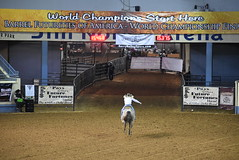 World Championship Barrel Racing Futurity (Andrew Penney Photography) Tags: cowgirls cowboys horses horse barrels barrel animal racing okc 405