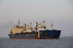 SKYLIGHT (angelo vlassenrood) Tags: ship vessel nederland netherlands photo shoot shot photoshot picture westerschelde boot schip canon angelo walsoorden cargo skylight