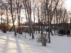 Sunny day (evisdotter) Tags: winter sunny juldagen snow snö trees träd light shadows sooc mariehamn