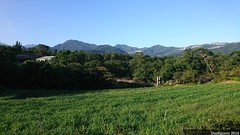 DSC_6351 (デュオ・カザミ) Tags: 台湾 taiwan キャンプ 農場 camp 新店 烏來 文山農場 taipei 旅行 観光スポット キャンプ場