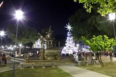 14.11.2018 Praça da Matriz recebe primeira Árvore de Natal