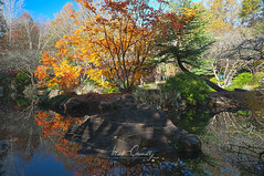 Striped Rock Shadows (4 Pete Seek) Tags: gibbsgardens gardens botanicalgardens nature naturephotography autumn autumncolors autumnleaves fall fallcolors
