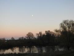 Moonrise and Sunset (BrigitteE1) Tags: deutschland germany mond moon firstquartermoon moonrise mondaufgang landscape landschaft see lake pond mood himmel sky evening abend sunset reflection reflexion