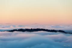 Stratus sur le bassin lémanique. Le Mont Bénand (MarKus Fotos) Tags: chablais bernex hautesavoie gavot stratus brume brouillard montagne mountain alpes alps auvergnerhonealpes