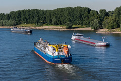 Rheinschiffe bei Meerbusch (5B-DUS) Tags: rheinschiffe bei meerbusch binnenschiff schiff vessel barge ship rhein