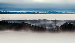 """Landscape"" (helmet13) Tags: d800e raw landscape mountains alps forest wood powerlines pole mist fog silence sky clouds foehn inversion lakeconstancedistrict germany ild aoi peaceaward platinumpeaceaward world100f"