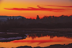 Bloody Red Night Sky (Martinionice) Tags: sunset bay sky evening november red dusk blood reflection bird sanctuary mountains trees ocean tide land scape canada bc cowichan