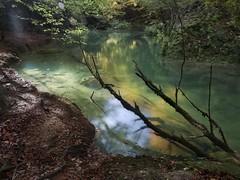 Ilumina el otoño (la_magia) Tags: 2018 navarra agua aguasturquesas arboles hayas hayedo hojascaidas musgo nacederourederra naturaleza piedra pozas riourederra sierradeurbasa paisaje verdes rio bosque baquedano españa otoño