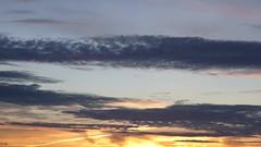 Swifts and the wind (seikinsou) Tags: brussels belgium bruxelles belgique summer midsummer dusk skyline sky cloud sunset swift wind video birdsong