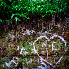 How Long My Love? (wrachele) Tags: love heart washington cape disappointment lighthouse fern green moss lichen wall grafitti fujifilm fuji fujinon