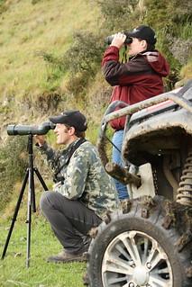 New Zealand Free Range Hunting - Marlborough 29