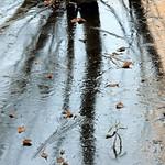 Icy Shadows thumbnail