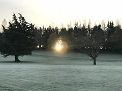 Frosty November Morning - All Souls Day 2018 (firehouse.ie) Tags: november2 morning sky sun sunrise daybreak dawn landscape nature ireland allsoulsday autumn winter 2018 november ice icey cold frosty frost
