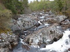 Cassley Falls 4 (Buchan11) Tags: scotland river rocks cassleyfalls cassleyriver trees