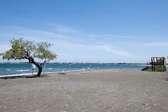 Salinas (DannySanx) Tags: nikon d850 nikkor 2470mm photography nature beach vew sky water trees cabin ocean dominican republic bani