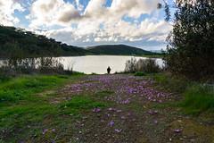 Camino de Flores (Bajobarba) Tags: huelva embalse aracena flores montañas camino nubes sonya6000 a6000