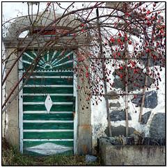 Dogrose (pixel_unikat) Tags: dogrose bush plant fruits red door green farmhouse austria mühlviertel white stone granite