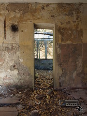 Geisterdorf 33 (Moddersonne) Tags: lost place urbex verlassen abandoned decay verfall urban exploration geisterdorf ghost village tür door wand wall laub