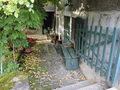 DSCN8140 (keepps) Tags: switzerland suisse schweiz fall autumn vaud brent