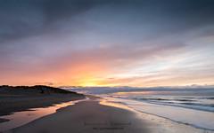 november light (ylemort) Tags: beach nature sunset sea sand outdoors coastline landscape dusk sky beautyinnature scenics sunlight nopeople water vacations sun summer blue sunrisedawn everypixel