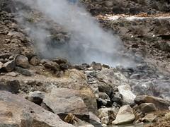 Hot springs (Linda DV) Tags: lindadevolder africa 2018 lumix travel geotagged nature kenya fauna baringo lake