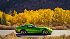 Dodge Viper SRT 10 (obscure.atmosphere) Tags: sonnenschein sonnenlicht licht light ligero lumiere sunlight sunshine sunny sonnig natur nature naturista naturaleza wald forest bosque selva foret woods blätter leaves baum bäume tree trees road strase street ps4 playstation 4 gt sport gran turismo dodge chrysler us usa american muscle car auto automobile supercar sportcar hypercar exotic automobil sportwagen coche carro automovil deportivo voiture srt viper herbst autumn otono automne 秋 가을 laub foliage espe aspe espen aspen zitterpappel quaking chrome wheels 10